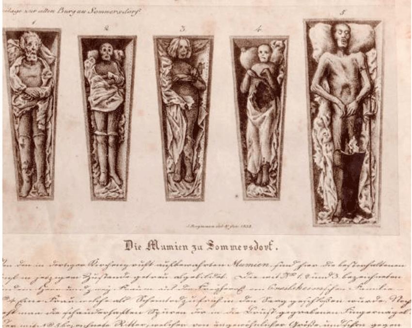 Lithographie der Mumien von Schloss Sommersdorf von Johann Bergmann aus dem Jahr 1833